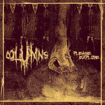 COLUMNS: PLEASE EXPLODE (CD)