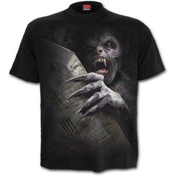 koszulka AWAKENING
