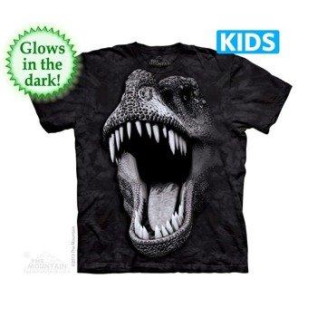 koszulka dziecięca THE MOUNTAIN - BIG FACE GLOW REX, barwiona