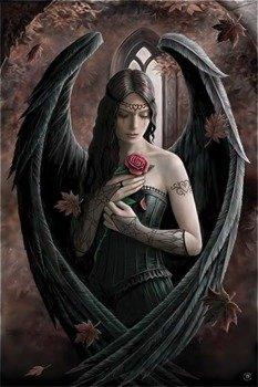 plakat ANNE STOKES - ANGEL ROSE