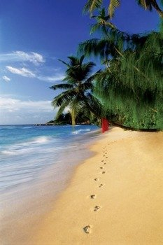 plakat BEACH - FOOTSTEPS