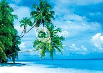 plakat MALDIVES - FIHALHOHI ISLAND
