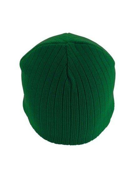 czapka zimowa MASTERDIS - BEANIE REGULAR GREEN