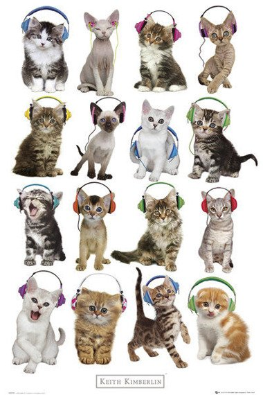 plakat KEITH KIMBERLIN - KITTENS HEADPHONES