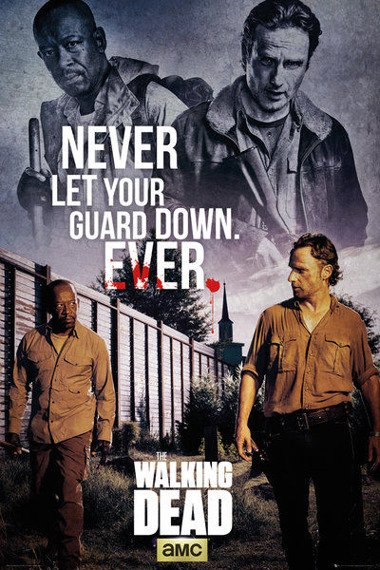plakat THE WALKING DEAD - RICK & MORGAN